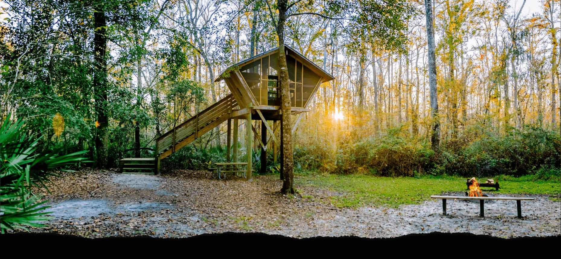 Sunset Wood House