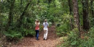 Nature Hikers at Camp Chowenwaw Park - Green Cove Springs FL